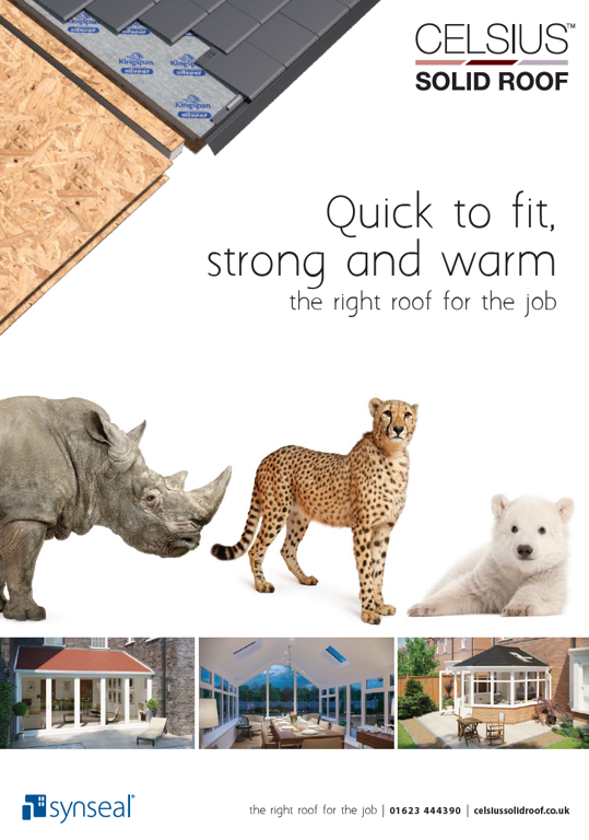 Download the Celsius Solid Roof Brochure